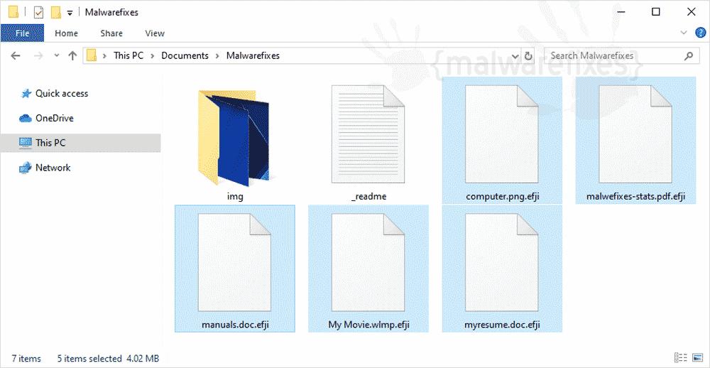 Image of Efji virus infected files
