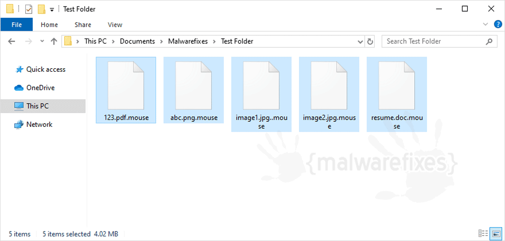 Image of Mouse infected files