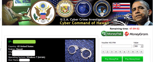 USA Cyber Crime Investigations