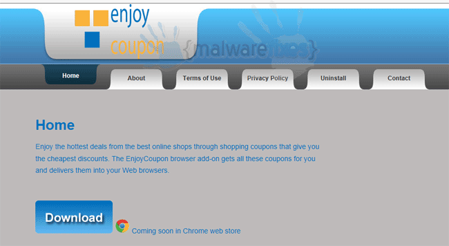 Screenshot of EnjoyCoupon website