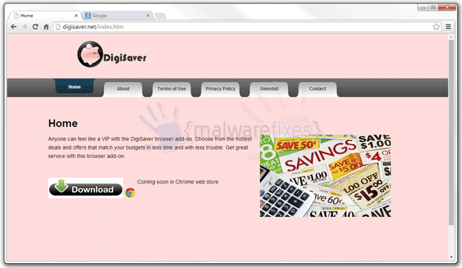 Screenshot image of DigiSaver website
