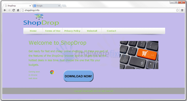 Image of ShopDrop website
