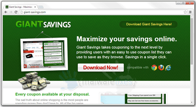 Screenshot of Giant Savings website