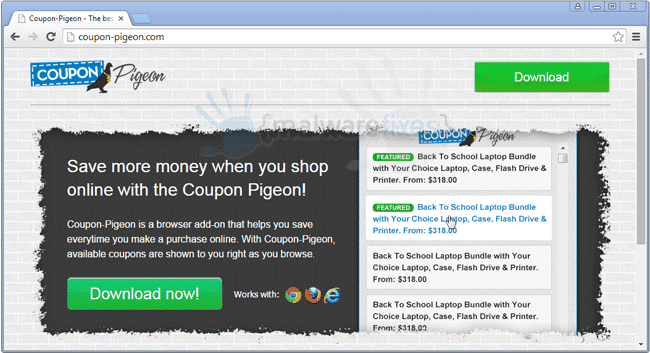 Image of Coupon-Pigeon website