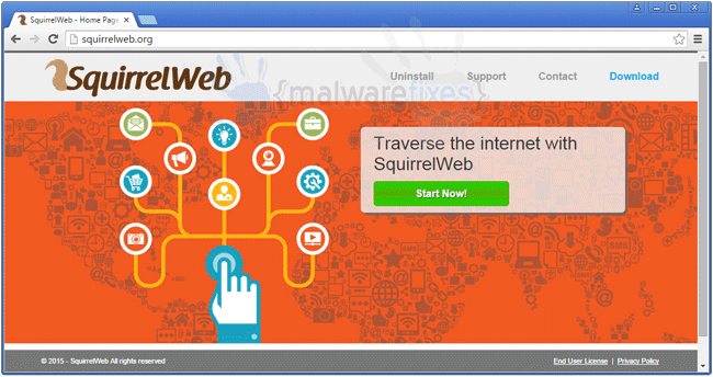 Screenshot of SquirrelWeb website
