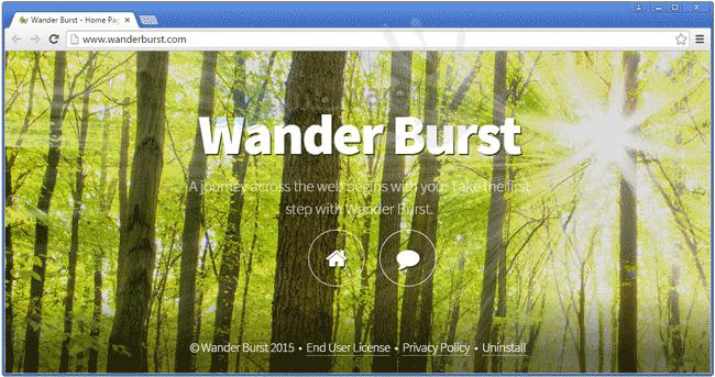 Image of Wander Burst website