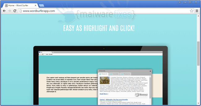 Image of Word Surfer website