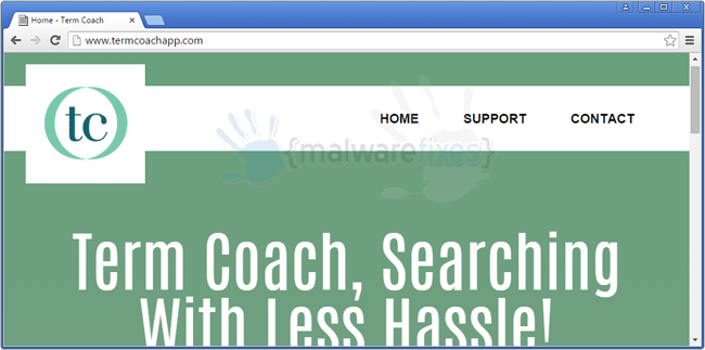 Image of Term Coach website