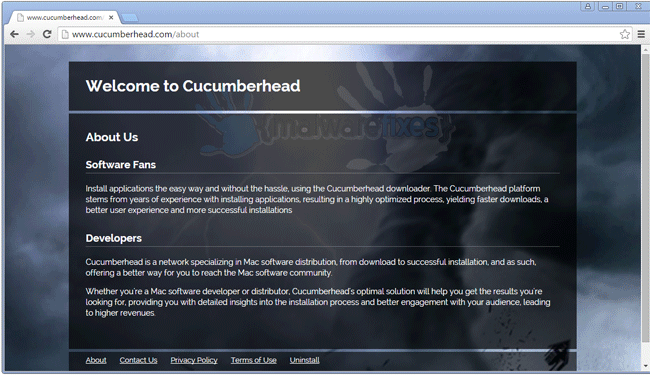 Screenshot of Cucumberhead website