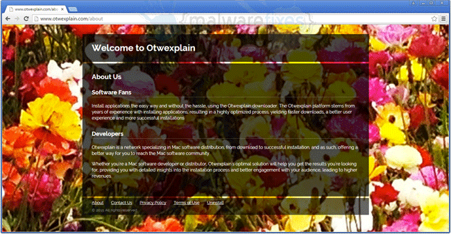 Screenshot image of Otwexplain