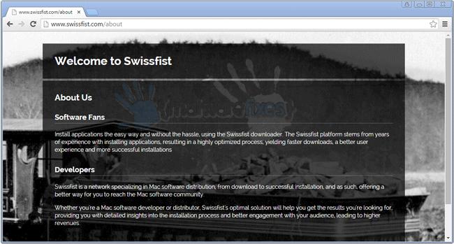 Screenshot of Swissfist website