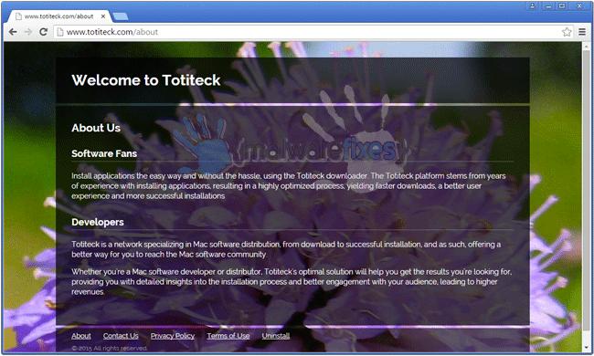 Screenshot of Totiteck website