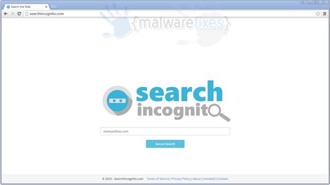 Searchincognito.com