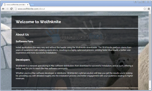 Screenshot of Wolfnknite website