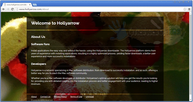 Screenshot of Hollyarrow website