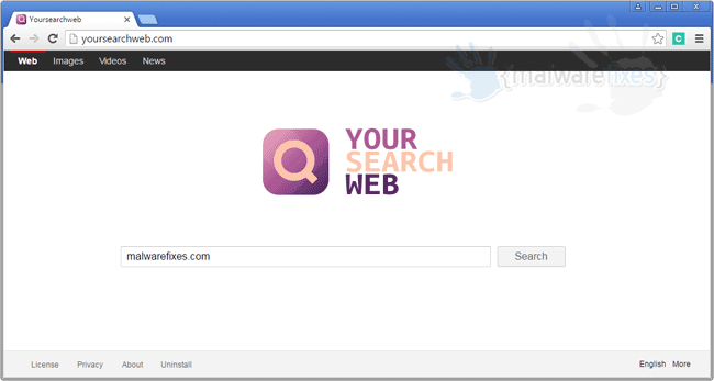 Your Search Web