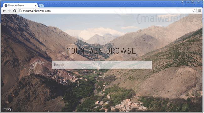 Mountain Browse