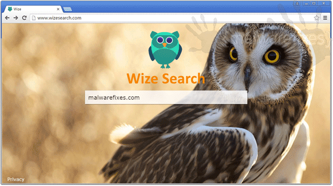 Wize Search