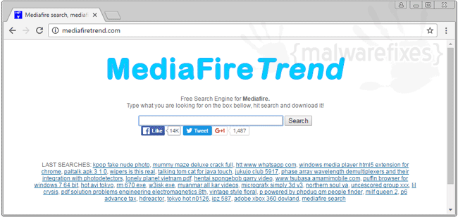 MediaFire Trend