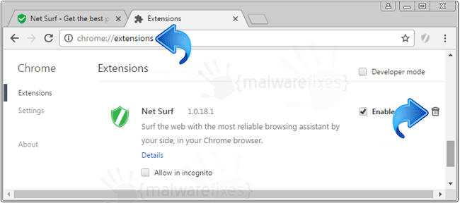 Net Surf Chrome Extension