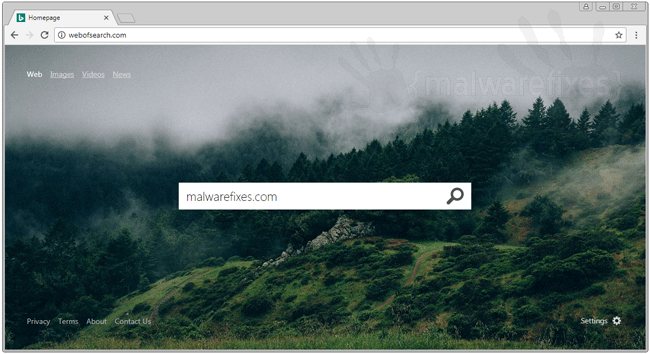 Webofsearch.com