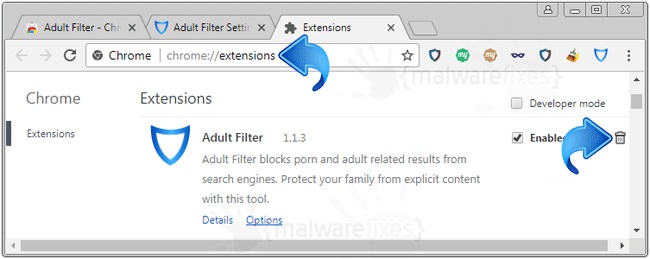 Adult Filter Chrome Extension