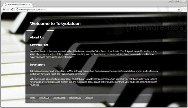 Screenshot of Tokyofalcon website