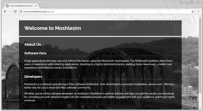 Screenshot image of Moshlezim website