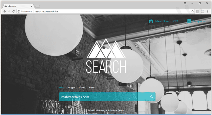 Search.securesearch.live