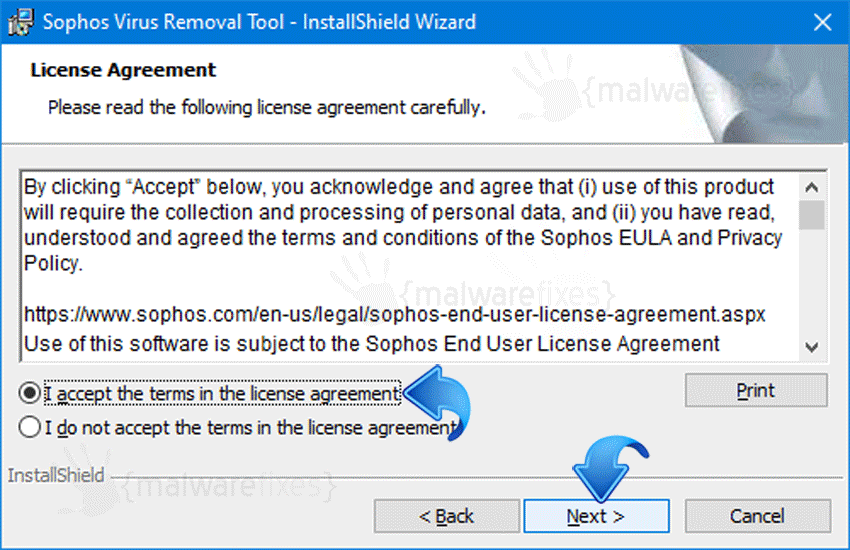 Screenshot of Sophos EULA Page
