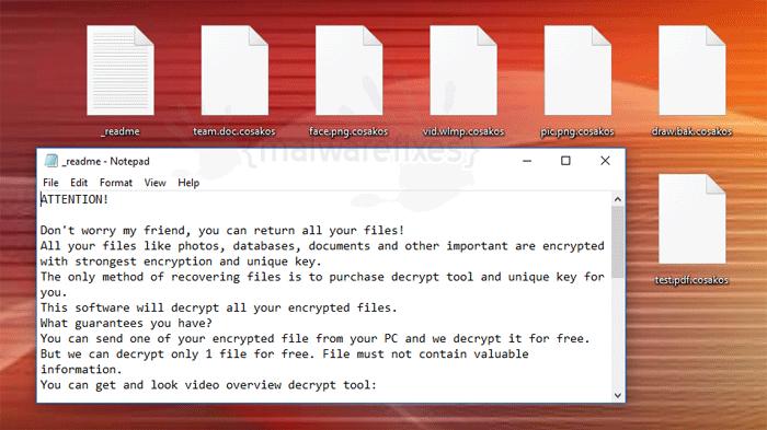 Screenshot image of Cosakos infected files