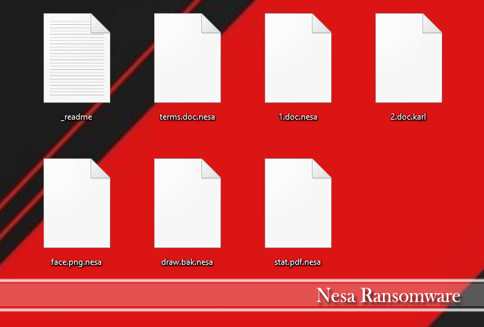 Image of Nesa encrypted files
