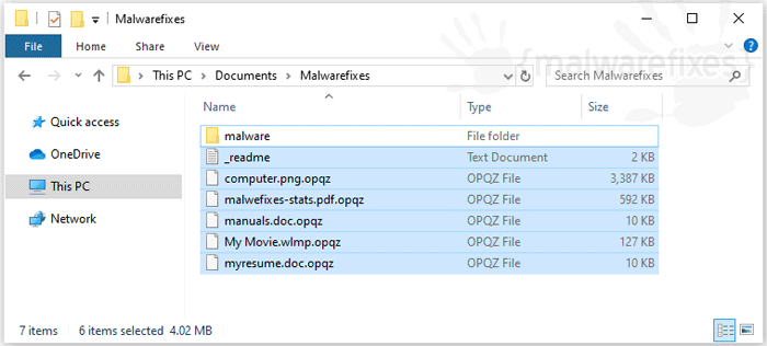 Screenshot image of Opqz infected files