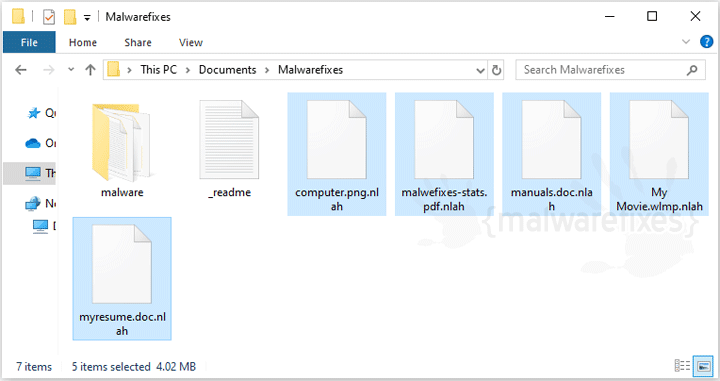 Image of Nlah infected files