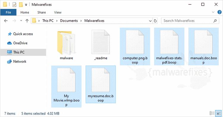 Screenshot Image of Boop Files