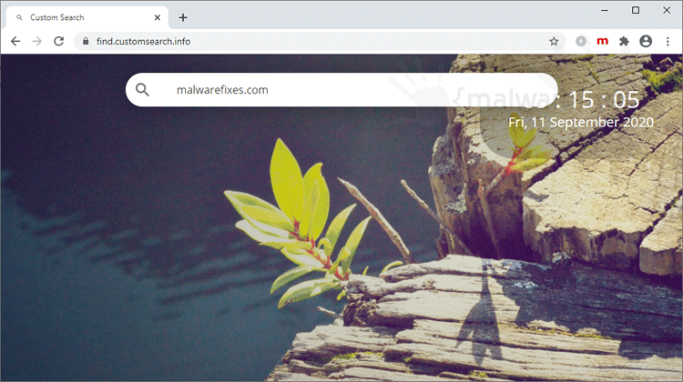 Custom Search Website