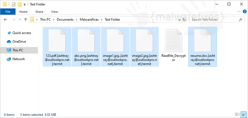 Image of Termit infected files