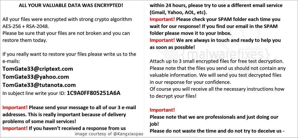Screenshot of TG33 ransom note