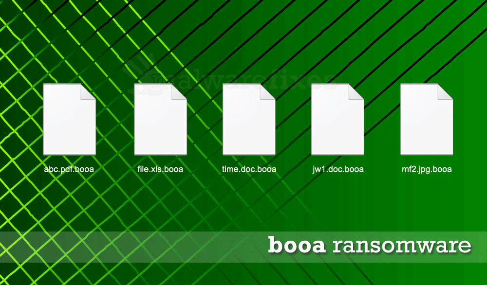 Image of Booa encrypted files