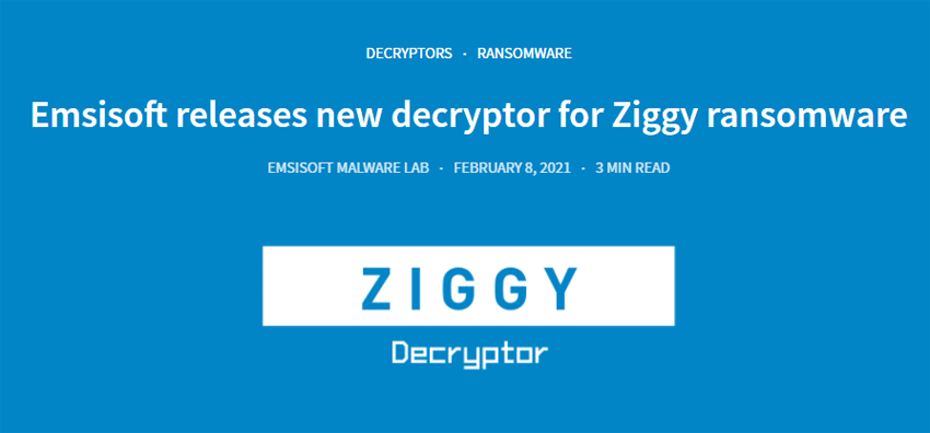 Image of Ziggy Recovery Software