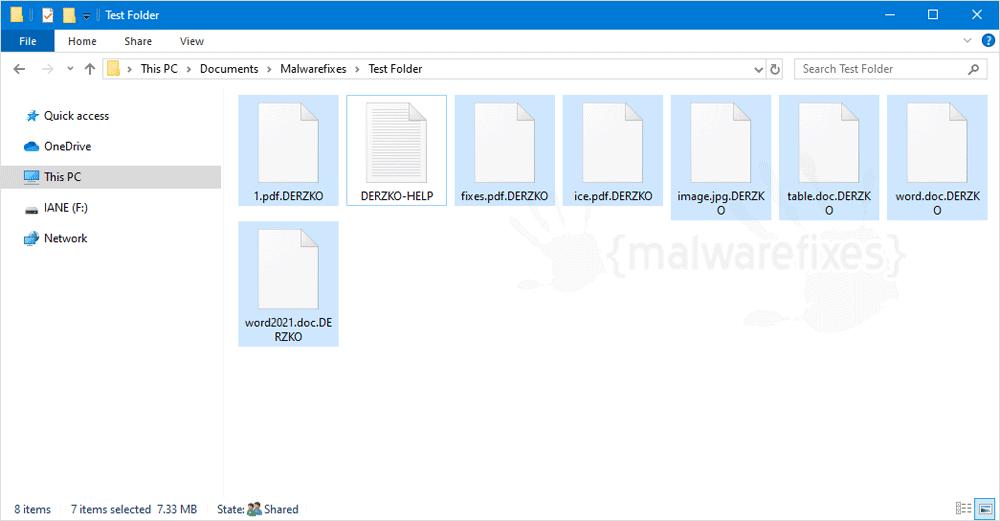 Screenshot of DERZKO encrypted files