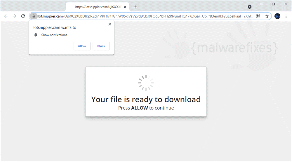 Screenshot of Lotsnippier.cam website