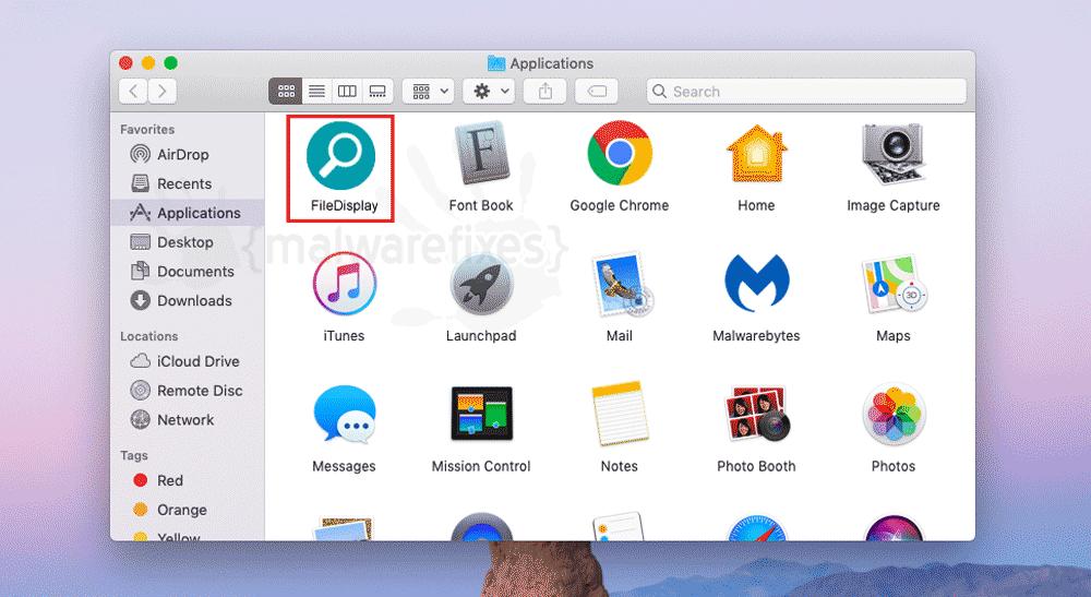 Screenshot of FileDisplay App